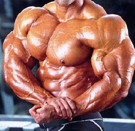 сroissance musculaire