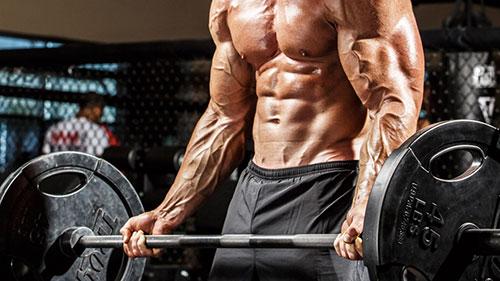 comment bombement efficacement biceps