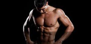 dips muscle sollicité