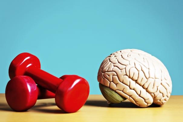 la-mémoire-musculaire