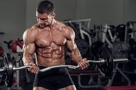 musculaire à la testostérone